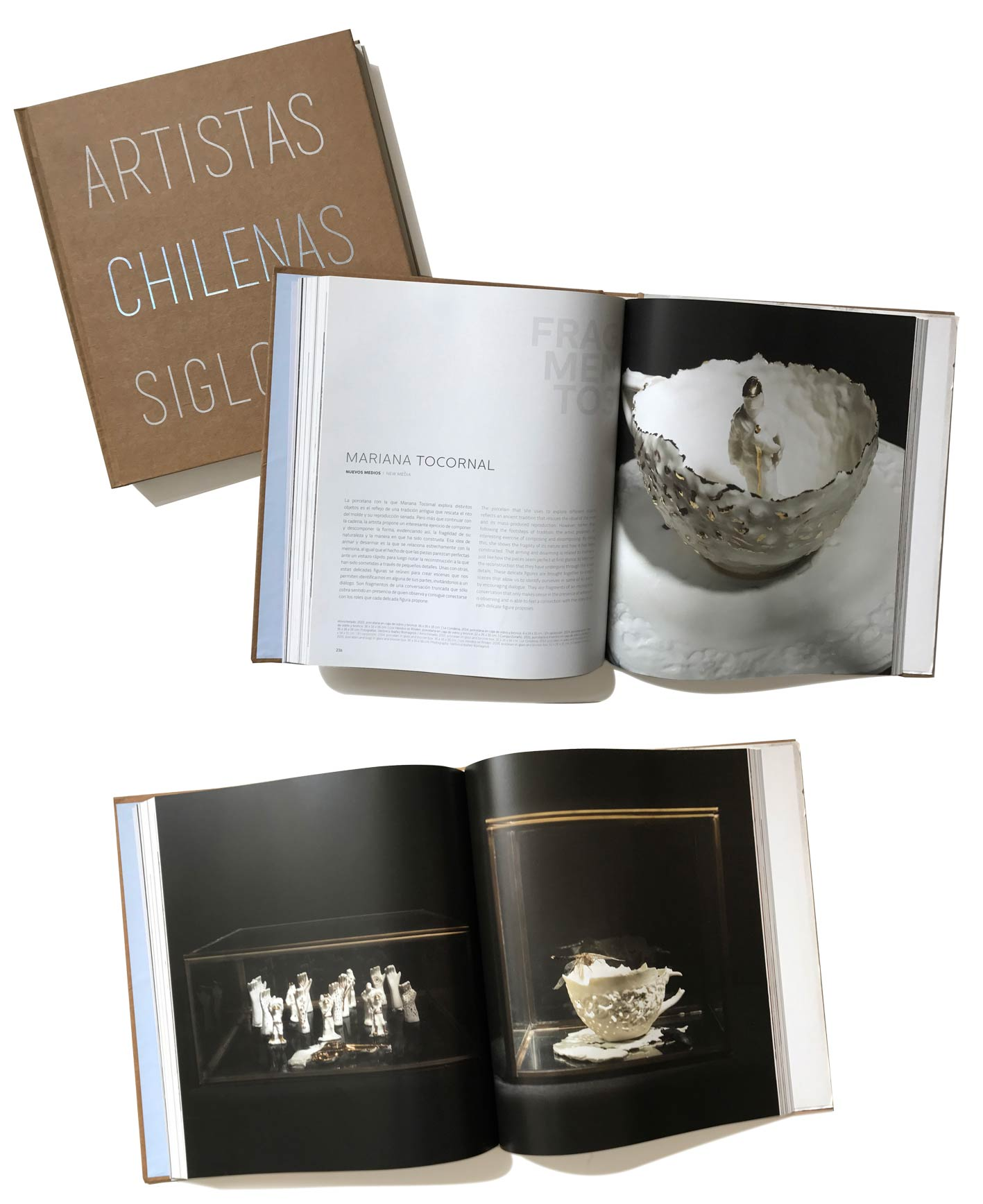 Libro Artistas Chilenas Siglo XXI