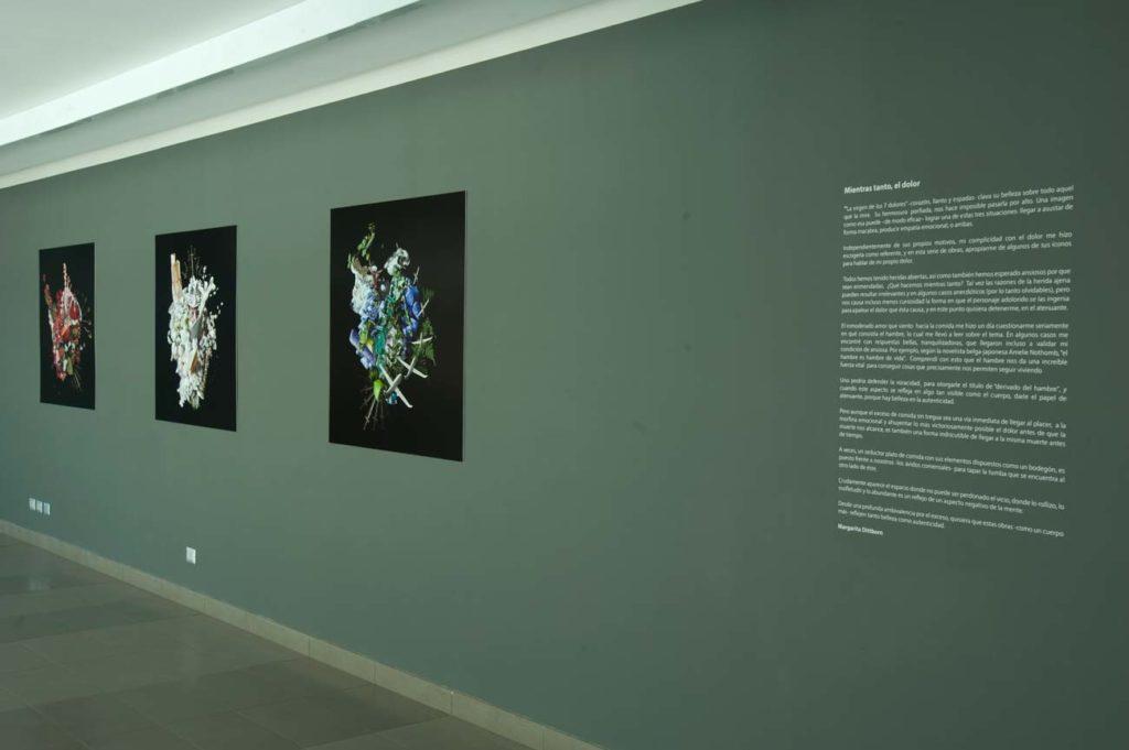 Exposición Alegorías de Dolor Propio